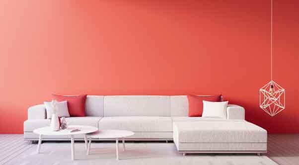 pack sofa